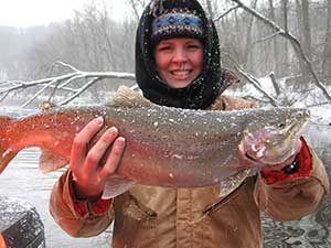 Nov-Dec: Steelhead Fishing at its best!